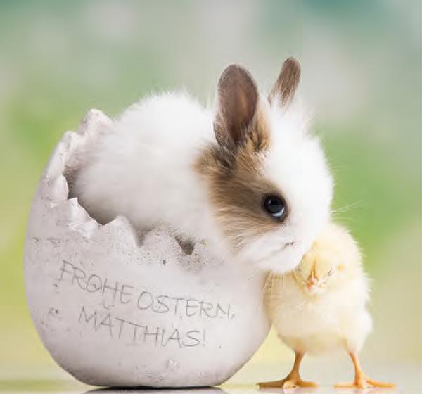 Die Schönsten Ostergrüße 2021